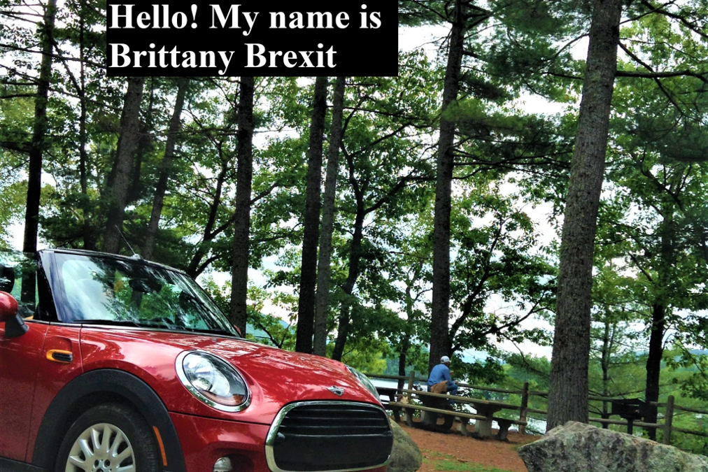 Hello! My name is Brittany Brexit, the Phrenssynnes's mini Cooper