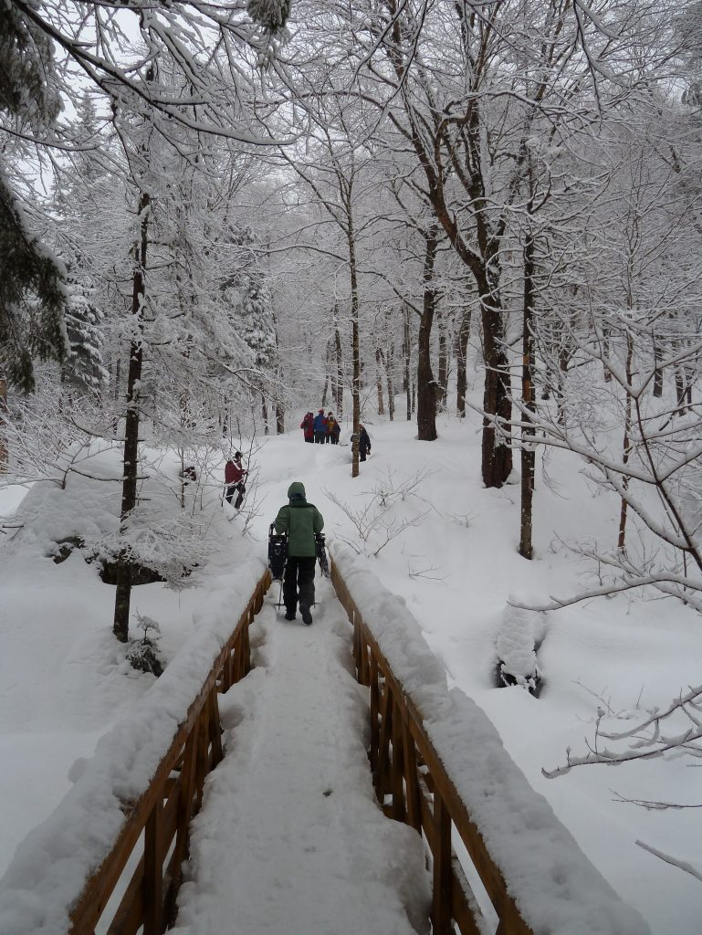 randonnée sentier 2
