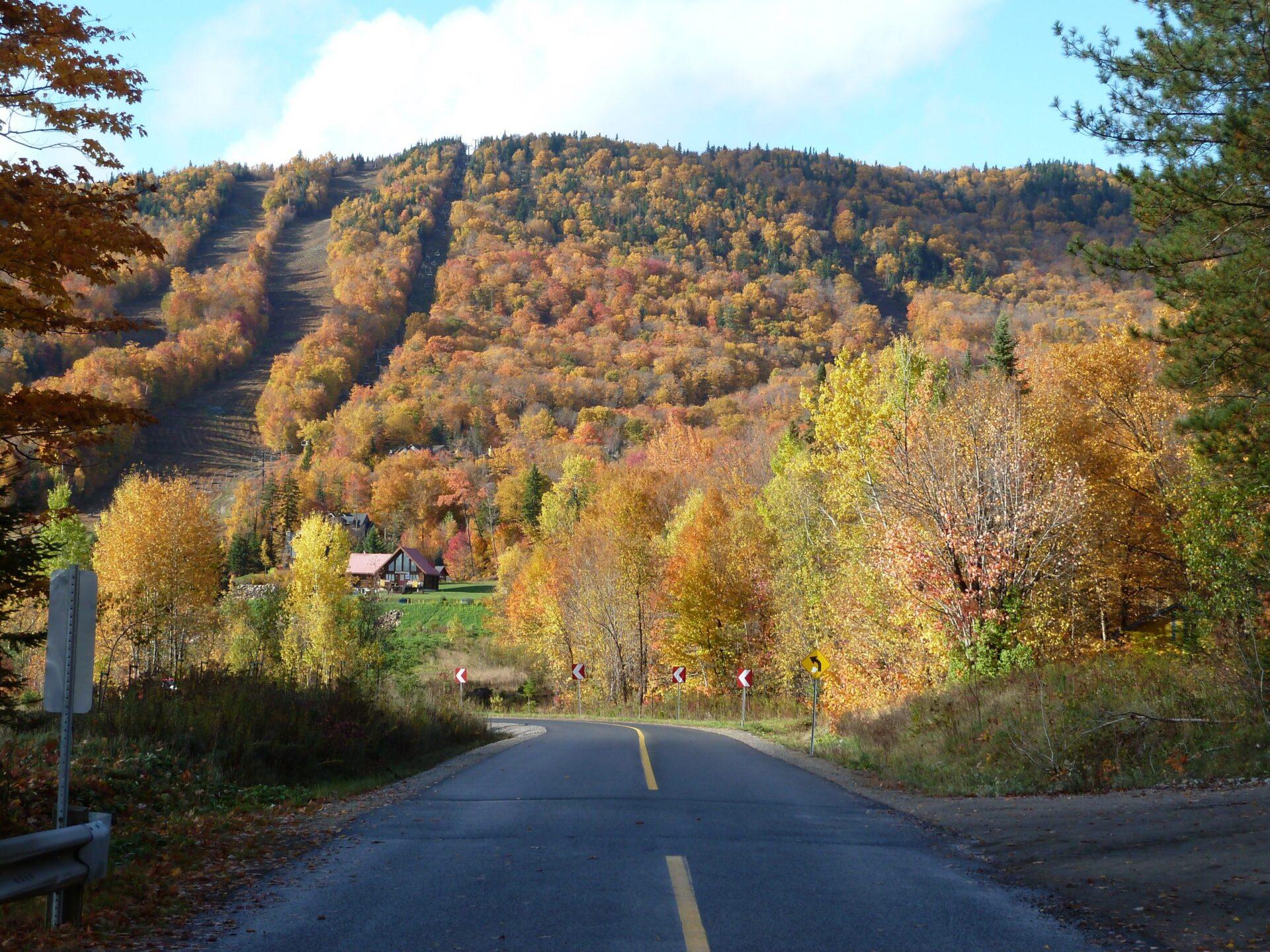 Route Stoneham
